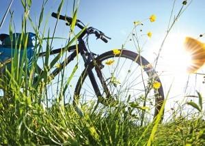 Fahrrad Package Pauschalen